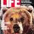 Life Magazine, August 1984