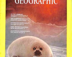 Item collection national geographic magazine january 1976 2015 08 04 13 20 39