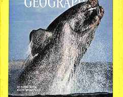 Item collection national geographic magazine march 1976 2015 08 04 13 20 03