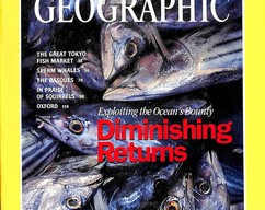 Item collection national geographic magazine november 1995 2014 03 24 23 04 57