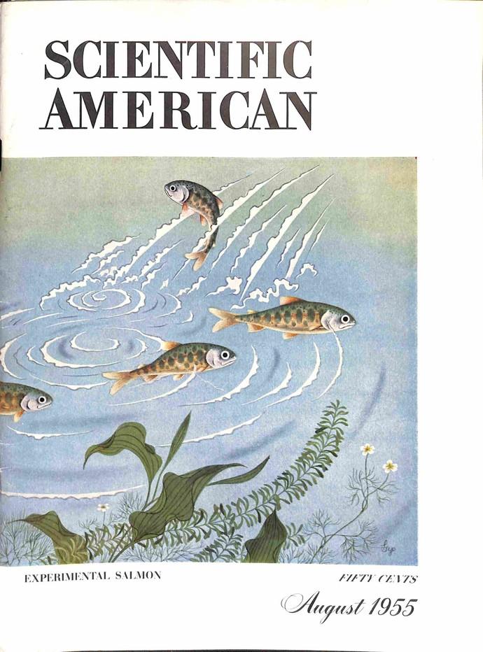 Scientific American, August 1955