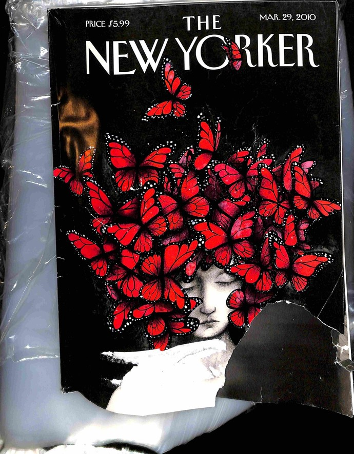 ababba39b The New Yorker, March 29 2010 by meremartcom on Zibbet