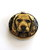 Tape Measure Real Dogs Retractable Measuring Tape