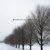 Winter Portrait: Bleak Midwinter
