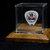 Def Leppard/Rick Allen guitar pick in a display case