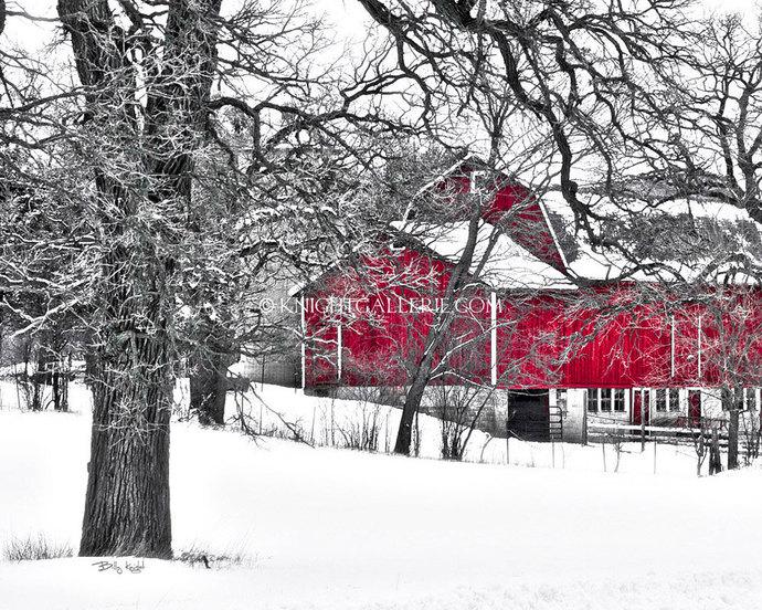 Winter Portrait: Rural Red Barn