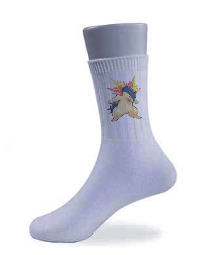 A Pair Of Typhlosion Socks