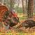 Turkeys In The Woods Cross Stitch Pattern***LOOK***
