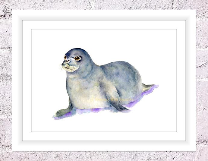 Seal Print, Baby Seal Art, Arctic Nursery, Gender Neutral Nursery, Nursery