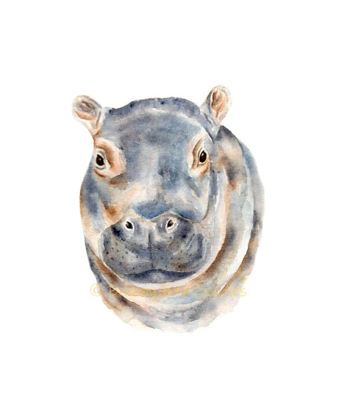 Evan the Baby Hippo Print