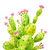 Cactus Print No. 1, Cactus Gift, Cactus Decor, Cacti Print, Green Decor, Prickly