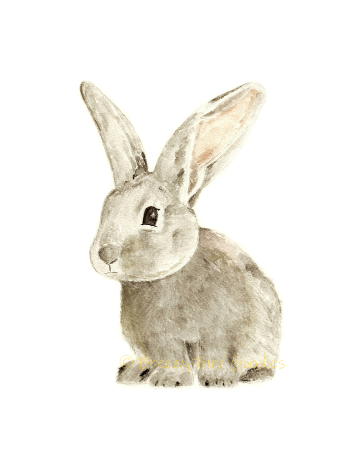 Mr. Breezy Bunny Print, Watercolour Art Print, Pet Portrait, Animal Nursery Art,