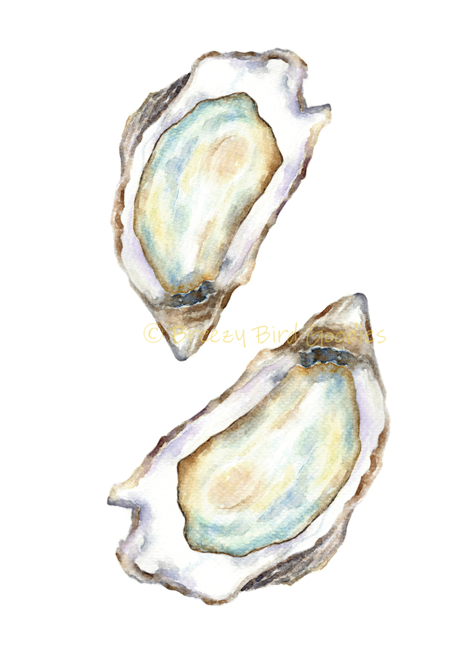 Oyster Print, Watercolour Oyster, Kitchen Print, Seafood Print, Watercolour