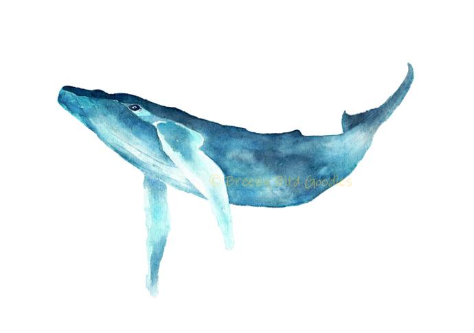 Humpback Whale Print, Watercolour Whale Art, Blue Whale Print, Nautical Print,