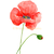 Set of 2 Red Poppies Prints