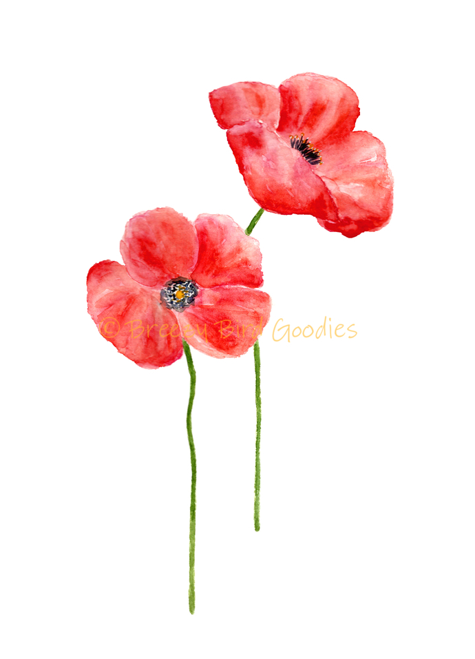 Set of 2 Poppy Flowers Print, Watercolour Poppy Flower, Red Poppies, Flower Wall