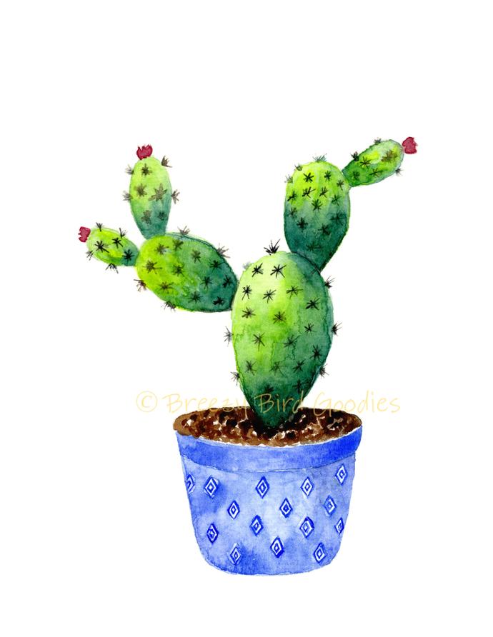 Three Amigos Cactus Set of 3 Prints
