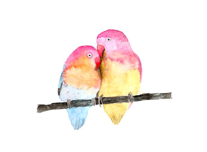Loving Birds Print, Watercolour Lovebirds, Birds in Love Art, Valentines Day Art