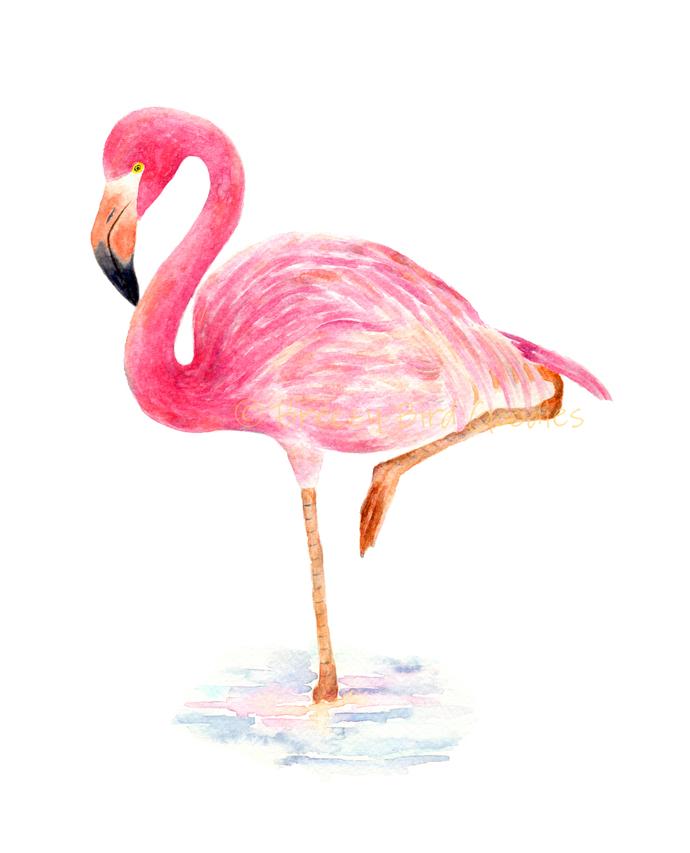 Flamingo Print, Watercolour Pink Flamingo, Watercolor Bird, Art for Home, Art