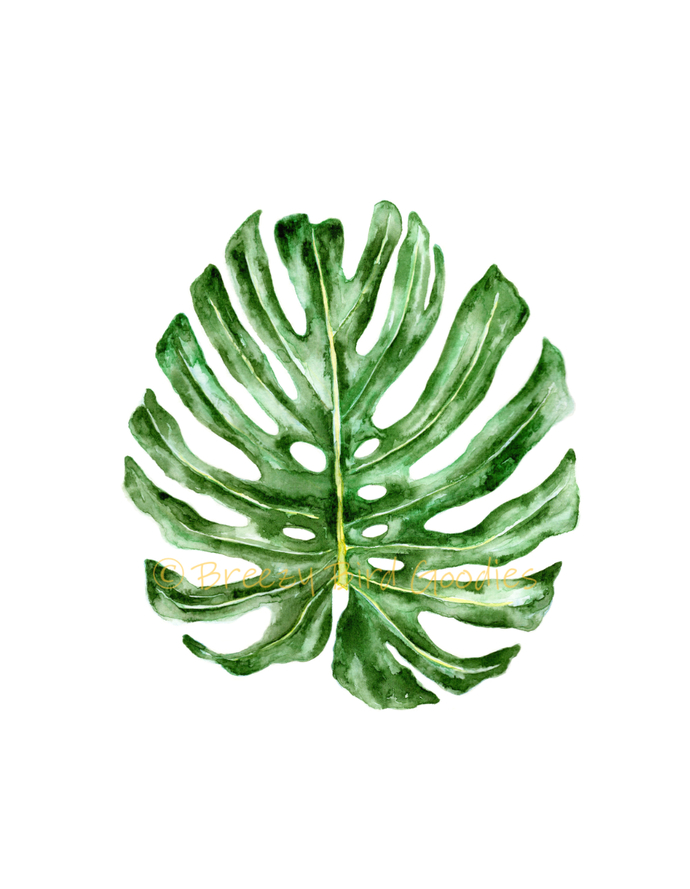Set of 2 Tropical Leaves Prints, Watercolour Tropical Leaves, Monstera Leaf