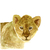 Lion Cub Print, Watercolor Lion Print, Baby Lion Art, Safari Animal