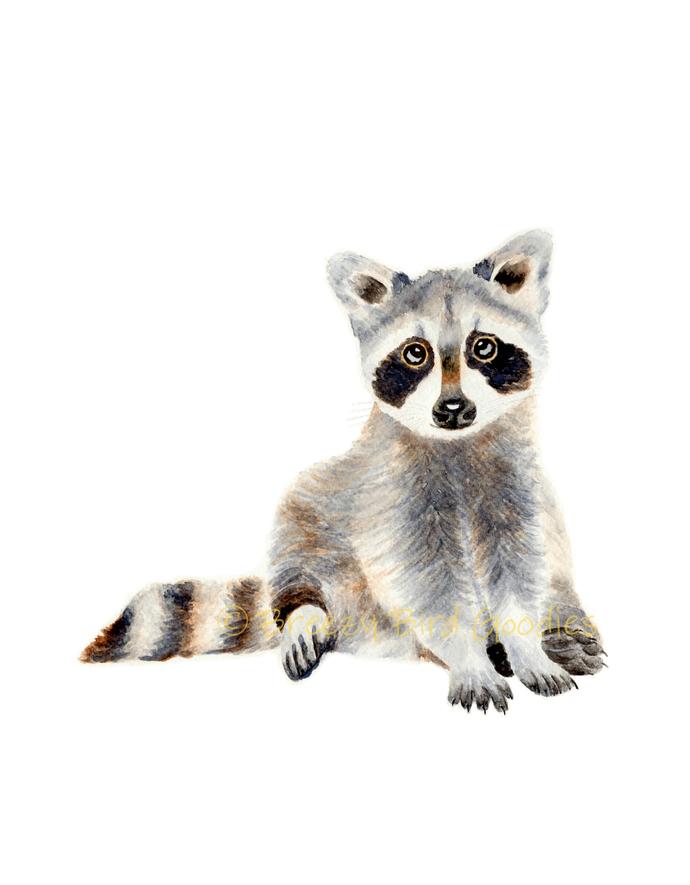 Baby Raccoon Print, Watercolor Raccoon, Woodland Animal, North American Raccoon,