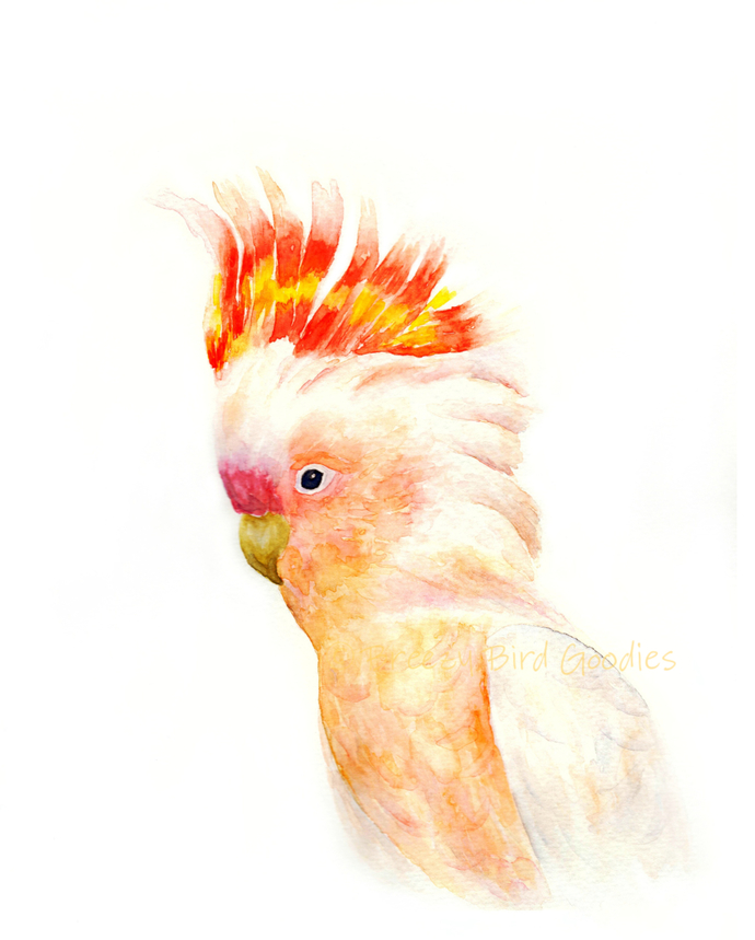 The Major Mitchell's cockatoo Print, Pink Cockatoo, Watercolour Cockatoo,
