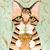 Iced Coffee Cat Original Cat Folk Art Watercolor Painting