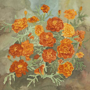"""Red And Gold Marigolds"" Giclee Paper Print by Carol Thompson"