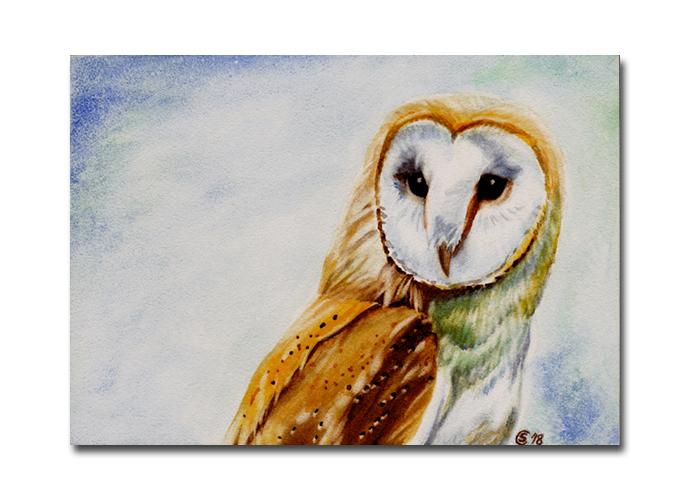Barn OWL 8 hibou chouette bird watercolor painting Sandrine Curtiss ORIGINAL Art