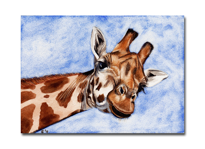 GIRAFFE 3 African savanna animal watercolor painting Sandrine Curtiss ORIGINAL