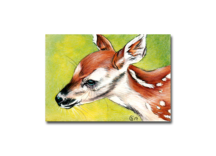 FAWN 15 deer doe animal wildlife painting Sandrine Curtiss ORIGINAL miniature