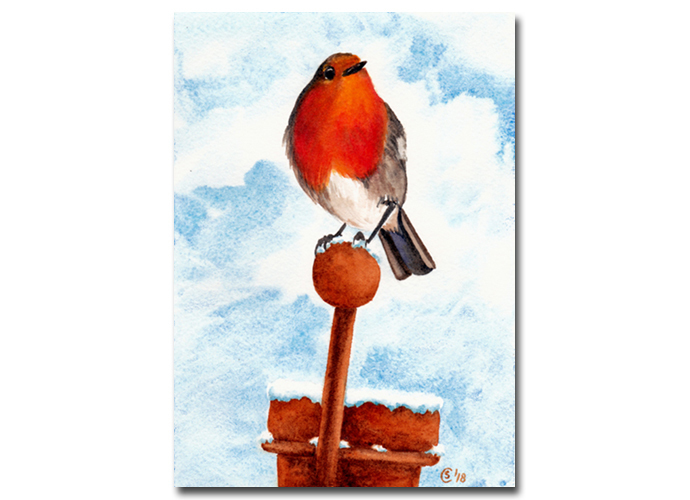 ROBIN 4 red bird oiseau watercolor painting Sandrine Curtiss ORIGINAL Art 5x7""
