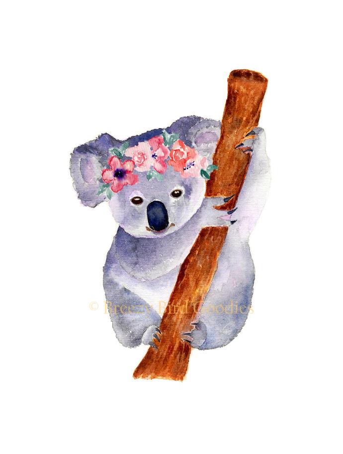Australian Marsupial Animals Set of 3 Prints