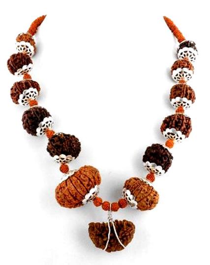 1 Face to 14 Face 1 Mukhi to 14 Mukhi Nepal Narural Rudraksha Silver Necklace,