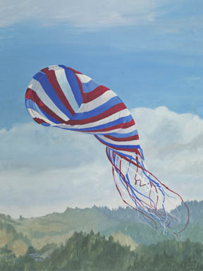 """""""Spinsock"""" Giclee Paper Print by Carol Thompson"""