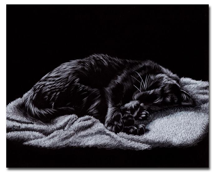 SUNSHINE 24 black cat kitten kitty chat noir colored pencils painting Sandrine