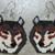 Brown Wolf Earrings Hand Made Seed Beaded