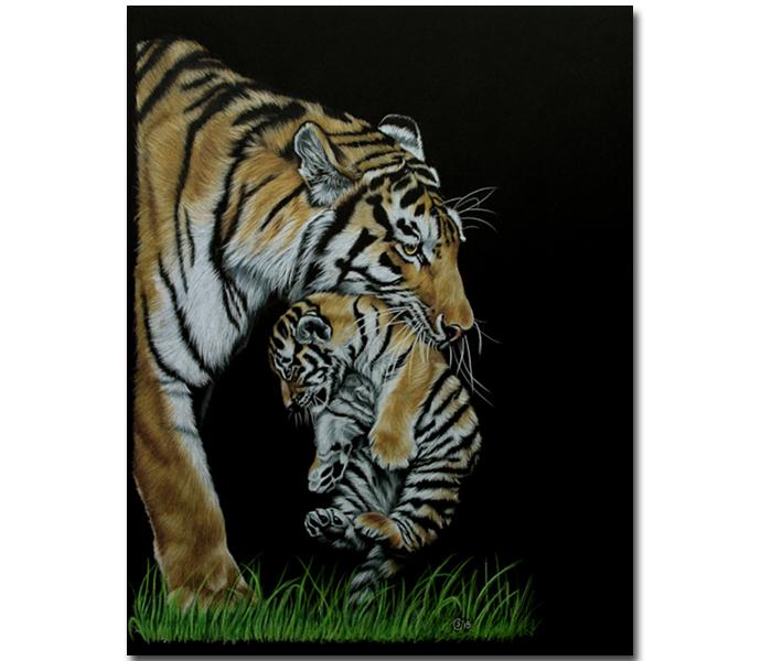 TIGER 65 tigress and pup colored pencils painting Sandrine Curtiss ORIGINAL Art