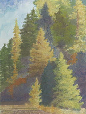 """""""The Larch"""" Giclee Paper Print by Carol Thompson"""
