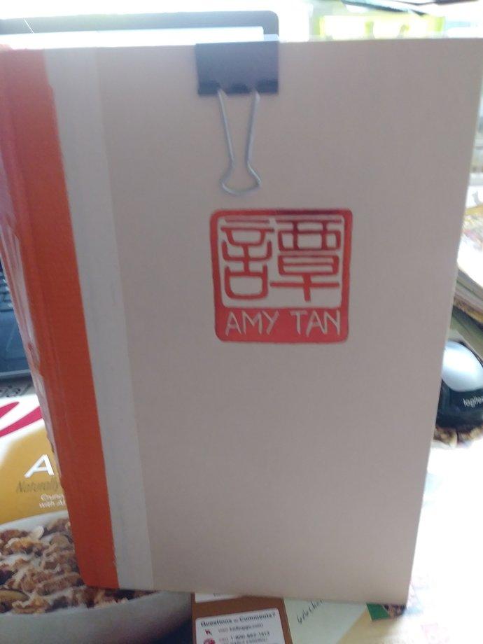 Amy Tan Junk Journal