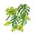 Lush Monstera Print, Monstera Leaf, Monstera Plant, Monstera Leaf Print, Green