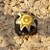 Yellow Sun Millefiori Ball Beads 10-1098