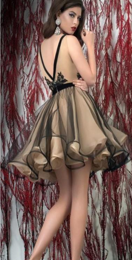 Black With Champagne Homecoming Dress,Tulle Short Prom Party Dresses ,New Arrive