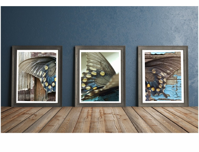 Nature photography print set, butterfly, rustic wall art, gift for her,