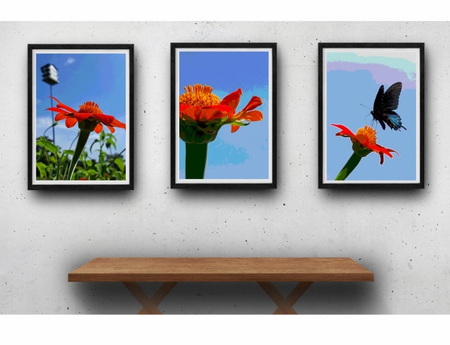 Nature photography print set, modern rustic wall art, flower photography,