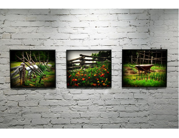 Nature photography print set, modern rustic, flower photography, garden wall