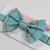 Little Guy Bow Tie - Spring Plaid