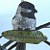 Raku Pottery Chickadee Ornament Clay bird on branch ceramic Christmas Ornament