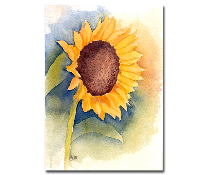 SUNFLOWER 3 yellow flower watercolor painting Sandrine Curtiss ORIGINAL Art 5x7""
